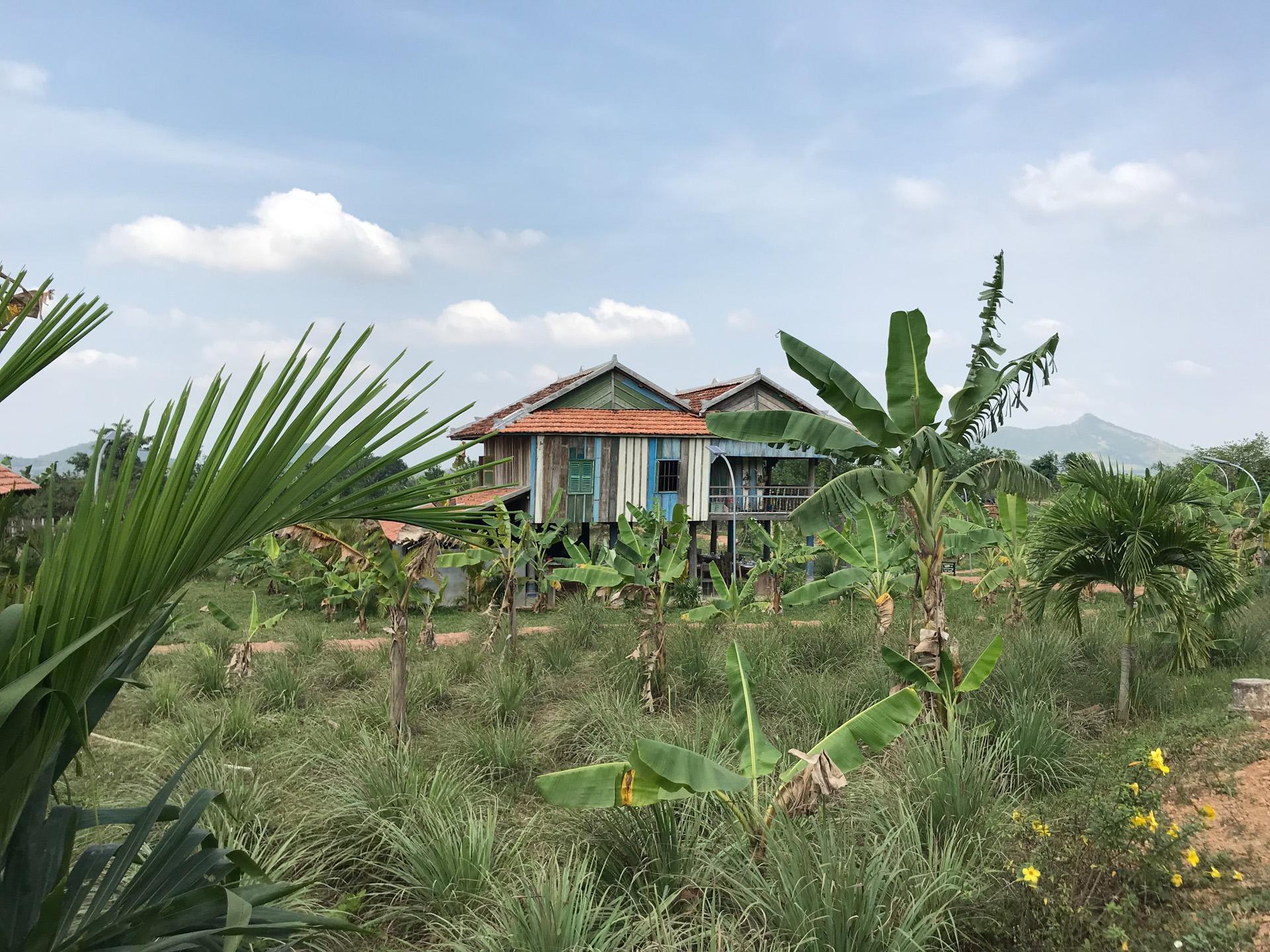 Cambodia-2074