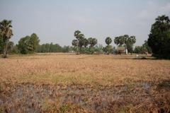 Cambodia-Kampot-17P1010914