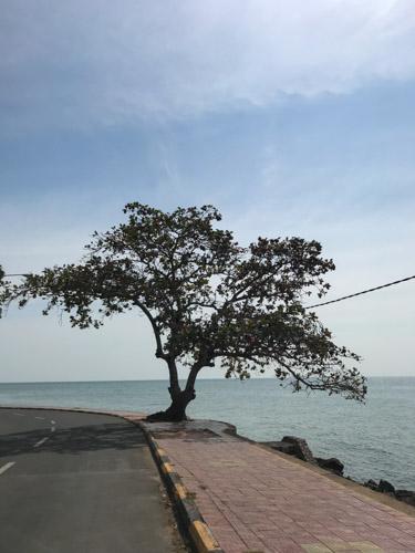 Cambodia-Kep-24IMG_2142